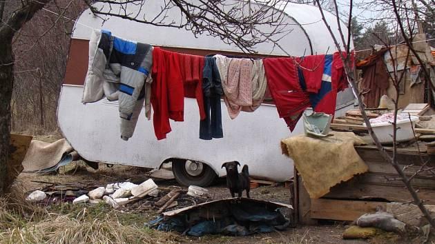 Osudem zkoušená Eva Svobodová z Čechočovice žije na okraji obce v přívěsu, bez přívodu tepla nebo elektřiny. V okolních boudách s ní přebývá 17 psů.