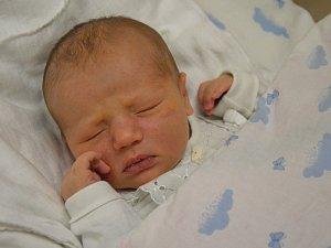 Podívejte se na miminka z třebíčské porodnice