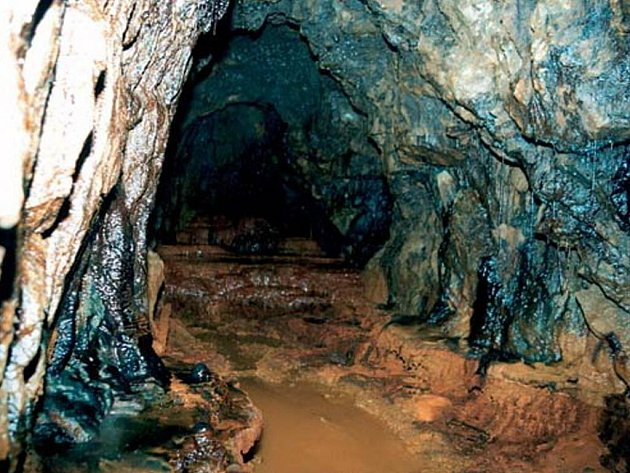 Středověké kutiště na Rounku tvoří kolem 40 dochovaných jam.