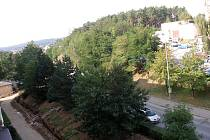 Takto vypadala část ulice M. Majerové před revitalizací. Vzrostlé zdravé stromy z  ní už zmizely.