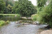 Veřejné tábořiště Fiola pod Mohelnem má své štamgasty. Mělká řeka je pro dětské letní koupání ideální.