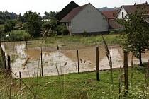 Obec Bransouze zasáhla v úterý odpoledne silná bouře. Voda, valící se ze svahů, vymlela v cestách hluboké rigoly. Obyvatelé domků pak museli odklízet naplavený šterk a zeminu. Půl metru vody a bláta nateklo i do hasičárny.
