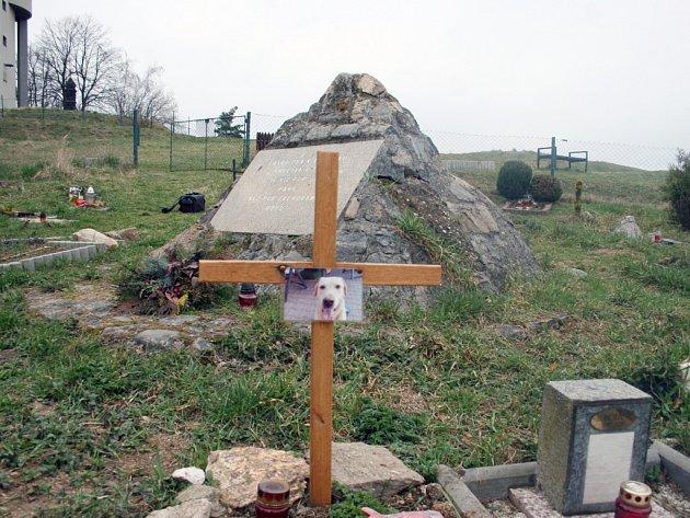 Ve stínu vodárny a na dohled od nedostavěné hvězdárny se na kopci v severní části Třebíče rozprostírá takzvaný psí hřbitov.
