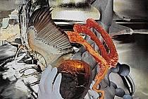 V pořadí dvacátá třetí mezinárodní výstava surrealismu je nyní v kostarickém městě Kartágu.
