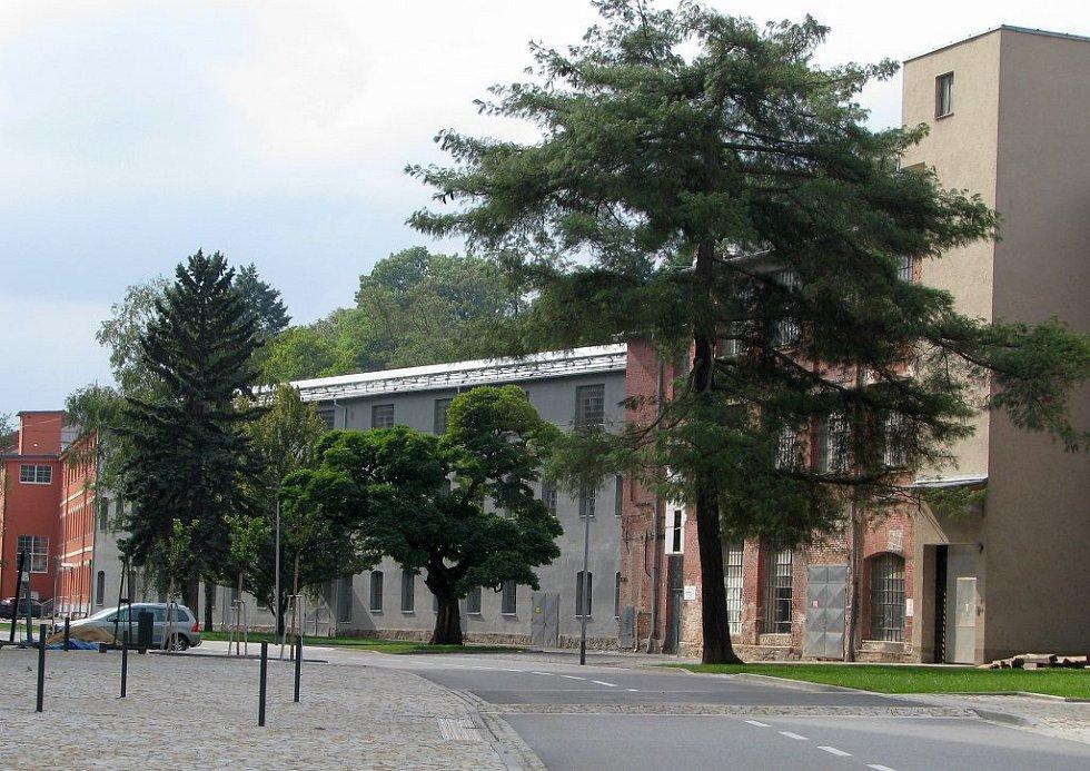 Nová veřejná prostranství v Borovině.