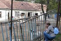 Ohrada se zvířaty funguje v areálu třebíčské nemocnice už léta. Chodí se tam dívat nejen pacienti, ale vodí k ní i rodiče svoje děti.