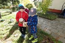 Domečky pro broučky ve školkové přírodní zahradě.