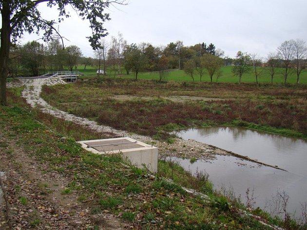 Bolíkovický rybník.