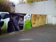 Studentská umělecká zeď v Moravských Budějovicích.