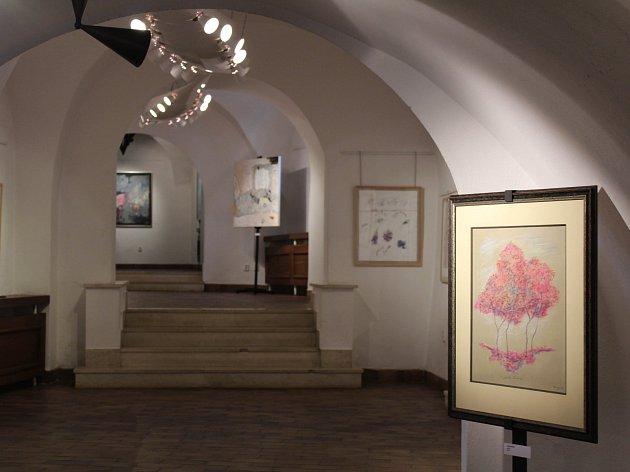 Výstava Jana Kanyzy v galerii Malovaný dům v Třebíči