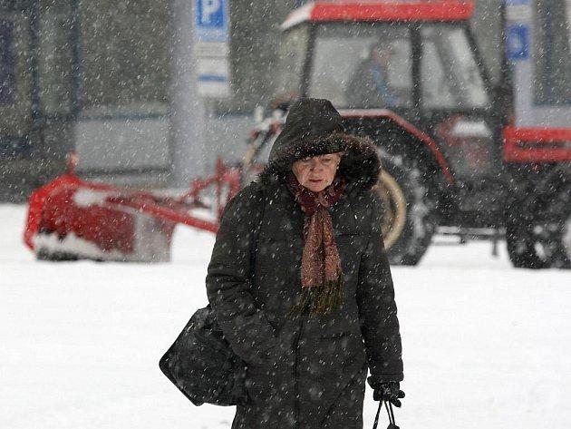 Vydatná sněhová nadílka zaplavila v pátek celé Třebíčsko. Nejvíce se z ní radují děti a lyžaři. Automobilová doprava zpomalila v pátek na minimum, hlavní tahy zůstaly ale průjezdné.