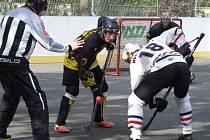 Slza Třebíč (v tmavém) neměla v domácím zápase proti Jundrovu potřebné hokejbalové štěstí.