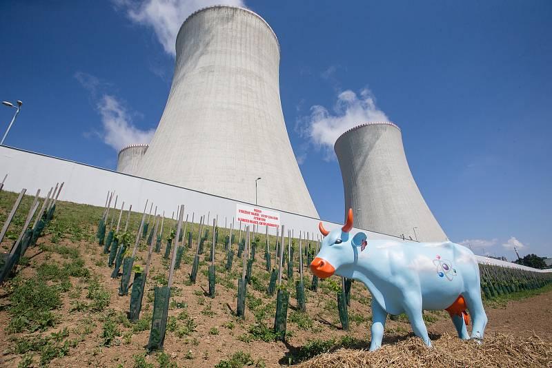 Slavnostní otevření jaderné vinice u Jaderné elektrárny Dukovany.