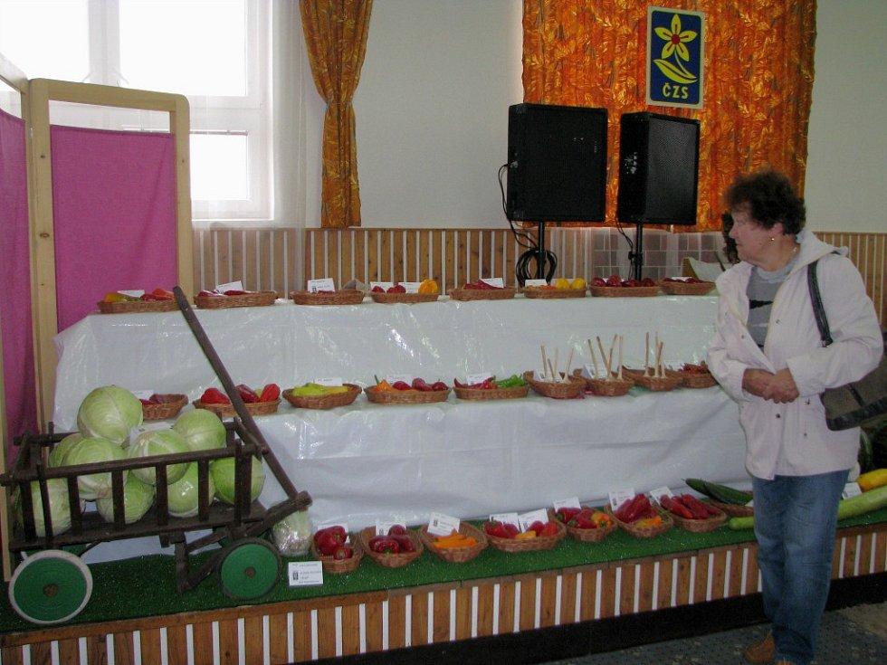 Ani nepříznivé suché počasí nezabránilo zahrádkářům z Třebíčska, aby uspořádali další ročník tradiční výstavy svých výpěstků. Také letos se bylo na co dívat.