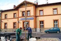 Zahradníci vysazují téměř pětimetrový jinan dvoulaločný před nádražní budovou v Moravských Budějovicích.