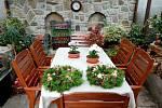 Podívejte se, jak vypadá podzimní zahrada našeho čtenáře. Přivítáme i vaše fotky