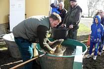 Sedmý ročník rybích hodů uspořádali v sobotu rybáři v Jaroměřicích nad Rokytnou. Hojná účast návštěvníků z Jaroměřic, blízkého i vzdálenějšího okolí svědčí o tom, že ryba je stále na jídelníčku velmi oblíbená a že ji lidé konzumují nejenom v době půstu.