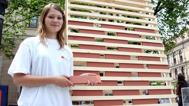 Už počtvrté pořádala Oblastní charita v Třebíči veřejnou sbírku nazvanou Akce Cihla.