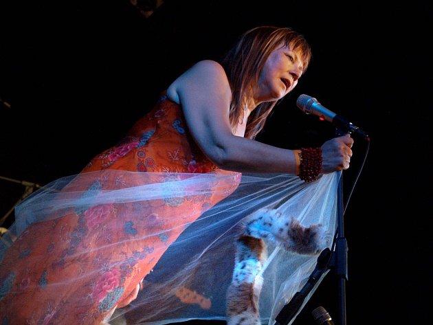 PRÁZDNINY ZAČALY. Mari Boine vystoupila na zahajovacím koncertě Folkových prázdnin v Náměšti nad Oslavou.