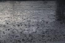 Vytopený dvůr a málem i sklep – takové následky měla čtvrteční podvečerní bouřka ve Starči.