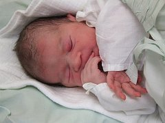 Prvním letos narozeným miminkem v třebíčské porodnici je Natálie Kratochvílová (na snímku) z Třebíče. Na svět přišla v pondělním dopoledni, vážila 3 300 gramů a měřila 50 centimetrů. Má se čile k světu a její maminka se těší, až si ji ponese z porodnice.