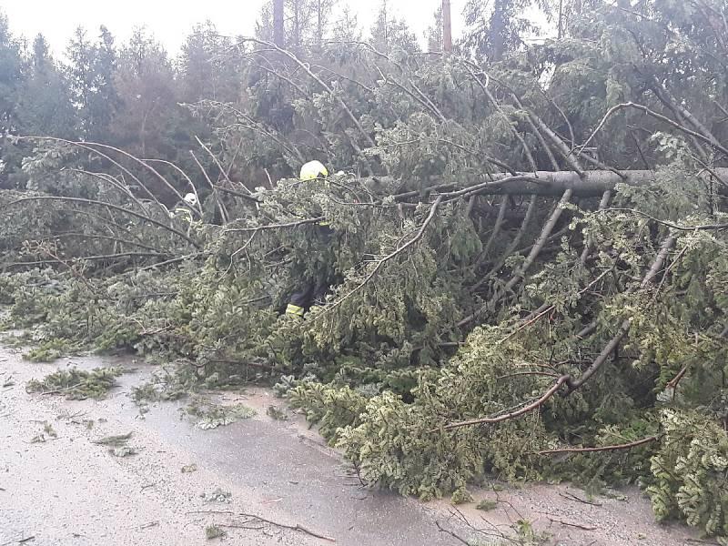 Hasiči odklízejí popadané stromy v Budkově.