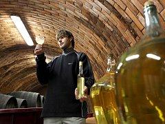 Sklepmistr Jan Bártík ukazuje už lahvovaný hotový výrobek. Není to ovšem ještě ten letošní, jedná se o archivní vzorek. Nová produkce teprve fermentuje, neboli kvasí, v demižonech. Koštovat se bude koncem března.