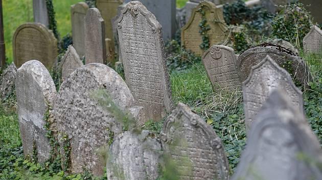 Židovský hřbitov v Třebíči - Světová památka UNESCO