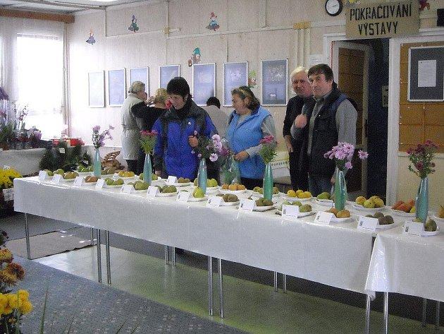 Už po třiadvacáté uspořádali zahrádkáři z Třebíčska Oblastní výstavu v Zahrádkářském domě ve Švabinského ulici.