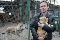 Vedoucí třebíčského útulku pro opuštěná zvířata Vlastimil Malý s psí slečnou Sisi, která na svého nového pána teprve čeká.