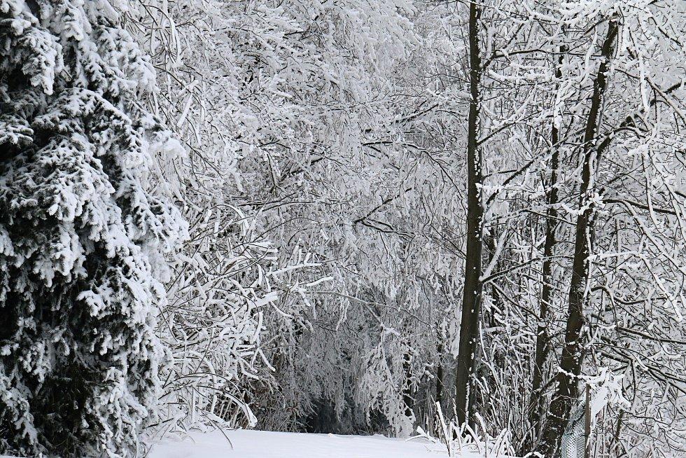 Teploty pod nulou a sněhové přeháňky. Takové počasí hlásí meteorologové na Vysočině.