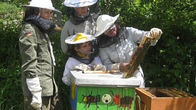 Malé včelaře v Bobrové zasvěcuje do tajů včelaření Ivana Řezníčková. Společně vykonávají všechny práce včetně vyrábění nových úlů.