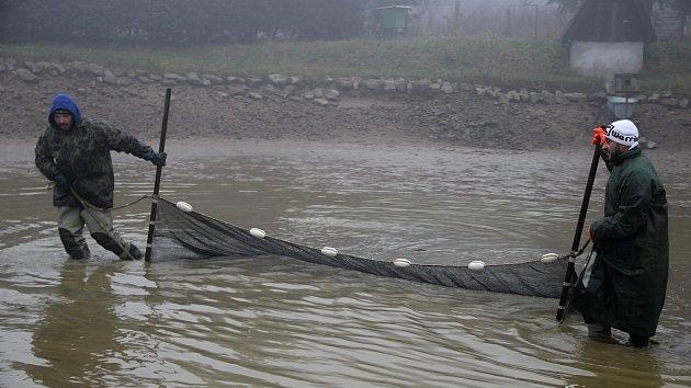 Příslušníci Petrova cechu vylovili rybník ve Studnicích