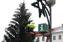 Meziříčský vánoční strom se na Náměstí rozsvítí v neděli.