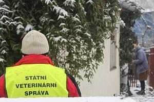 Veterináři z Krajské veterinární správy v Jihlavě utratili šest slepic a kohouta také v sousedním chovu Marty Němcové.