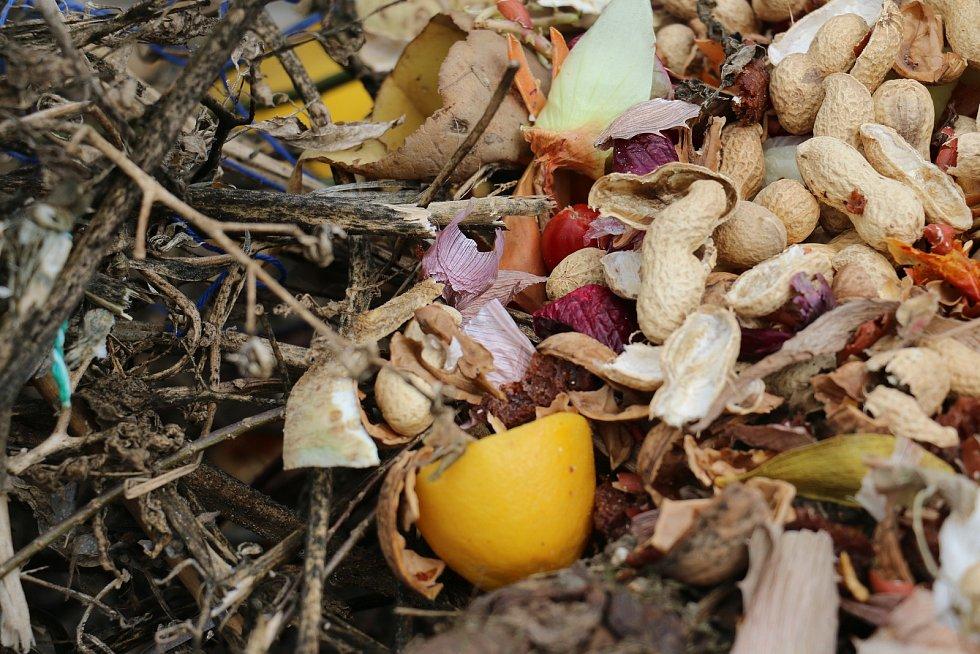 Dále pak dřevěné piliny, zbytky ovoce, slupky, nať, čajové sáčky, kávovou sedlinu, skořápky z vajec a vychladlý popel ze dřeva a dřevěného uhlí.