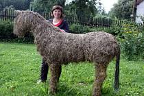 Květa Konárová z Koníkova má zajímavý koníček výrobu zvířat ze sena. V Koníkově nechybí ani kůň.