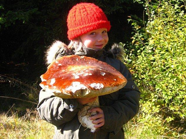 """1,8 kilogramů vážil pravák, kterého objevil Leoš Zeman poblíž Žďáru. A to právě v době, kdy si všichni houbaři stěžují, že nic neroste. Zapomenutá """"houbička"""" se nacházela v okolí Račína a byla naprosto zdravá. Pózuje s ní dcera Lucinka."""