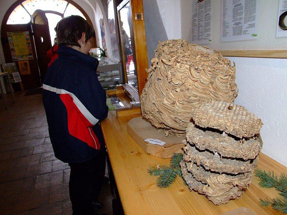 Horáckým muzeem se rozvoněl med