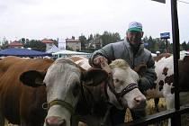 Zemědělské družstvo v Krásné Hoře vystavovalo tři mladé dojnice.
