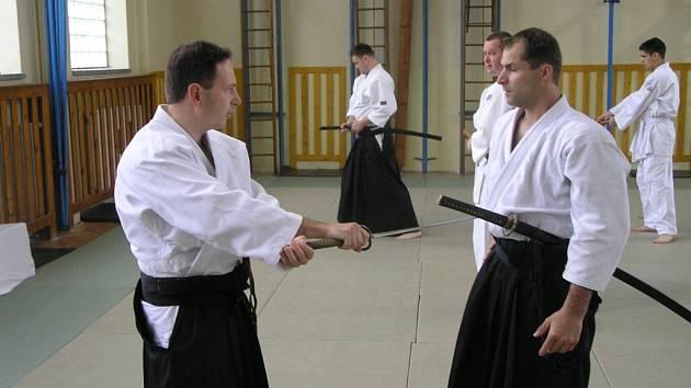 Aikido ve Žďáře nad Sázavou...