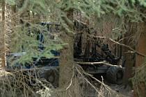 Ilustrační foto. S těžbou městu pomáhají harvestory.