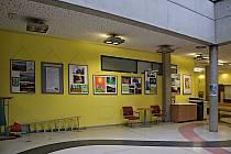 Výstava se z brněnské nemocnice později přestěhuje do sídla Kraje Vysočina.