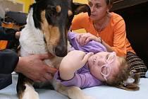 Léčebná metoda, prostřednictvím níž je využíváno pozitivního působení psa na fyzickou, psychickou i soci- ální pohodu člověka.