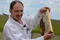 Včely pomáhají hlídat kvalitu ovzduší na pražském Letišti Václava Havla. Stará se o ně letecký inženýr a včelař z Vojnova Městce na Žďársku Roman Kuttelwascher.