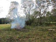 Zanedbanou oblast bylo potřeba mimo jiné zbavit náletových dřevin.