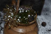 Namísto sněhových vloček kroupy. 14. března probudil obyvatele vyšších poloh na Žďársku poněkud netypický zvuk. Bušení krup do střech.