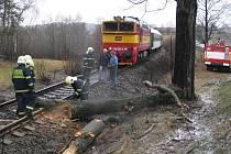 Kmen stromu na kolejích zastavil osobní vlak v Radňovicích.