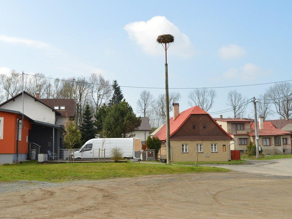První čápi bílí, kteří se letos objevili ve Žďárských vrších, zamířili na hnízdo do Vojnova Městce.