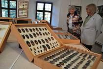 Od úterý 4. října mohou lidé navštívit novou výstavu Regionálního muzea ve Žďáře nad Sázavou. Věnována je tentokrát hmyzu.